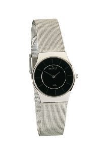 Skagen Womens 233sssb Silver Watch