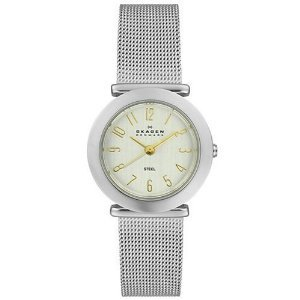 Skagen 107sgsc Collection Accented Stainless